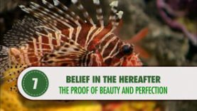 Belief in the Hereafter – 7 – The Proof of Beauty and Perfection
