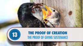 Proof # 13: The Proof of Giving Sustenance
