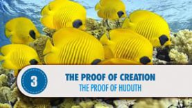 Proof #3: The Proof of Huduth