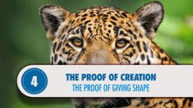 Proof # 4: The proof of Giving Shape