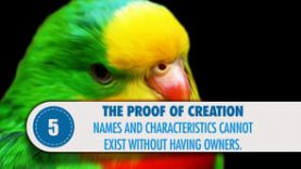 Proof # 5: Names and characteristics cannot exist without having owners.