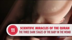 Scientific Miracles of the Quran, 11 – The Three Dark Stages of the Baby in the Womb