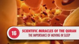 Scientific Miracles of the Quran, 16 – The Importance of Moving in Sleep